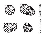 onion icon in four variations....   Shutterstock .eps vector #362001839