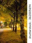 colorful night scene in autumn | Shutterstock . vector #362005694