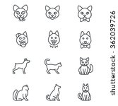 Stock vector icons of cats and dogs in different positions as line icons ages and different positions of cats 362039726