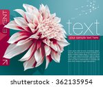 vector abstract booklet cover... | Shutterstock .eps vector #362135954