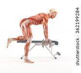 bodybuilding gym exercising.... | Shutterstock . vector #362199284