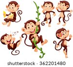 little monkeys doing different...
