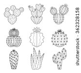 Vector Set Of Contour Cactus...