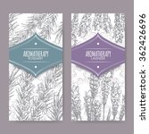 set of 2 labels with lavender... | Shutterstock .eps vector #362426696
