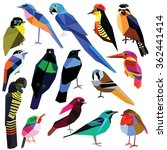 birds set colorful low poly... | Shutterstock .eps vector #362441414