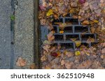 Leaves Clogging A Drain