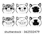Stock vector vector set of drawing cat face isolated on white background 362532479