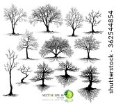 black tree silhouettes on white ... | Shutterstock .eps vector #362544854