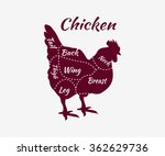 chicken cuts diagram.... | Shutterstock .eps vector #362629736