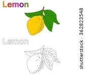 vector of lemon  coloring lemon | Shutterstock .eps vector #362823548