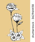 flower line art in brown... | Shutterstock .eps vector #362964458