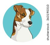 Jack Russell Terrier. Vector...