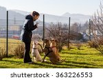 Stock photo woman instructing dogs outside 363226553