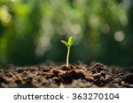 green sprout growing out from...   Shutterstock . vector #363270104