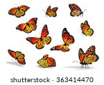 Stock photo many yellow orange butterflies isolated on white background 363414470
