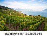 vineyards of the lavaux region...   Shutterstock . vector #363508058