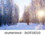 frosty winter landscape in... | Shutterstock . vector #363518210