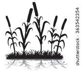 cattails silhouette   Shutterstock .eps vector #363542354