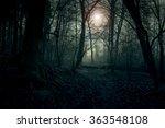 Dark Landscape. Forest In The...