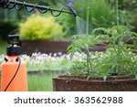 protecting tomato plants from... | Shutterstock . vector #363562988