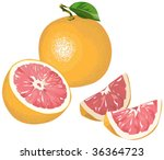 grapefruit with half and pieces | Shutterstock .eps vector #36364723