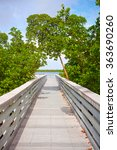 mangrove trees and pedestrian...