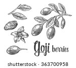 goji berries on a branch.... | Shutterstock .eps vector #363700958
