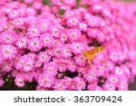 flowers and butterfly | Shutterstock . vector #363709424