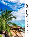 tropical beach   Shutterstock . vector #363781148
