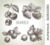 hand drawn sketch berries set.... | Shutterstock .eps vector #363810383