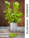 green fresh basil in small... | Shutterstock . vector #363880649