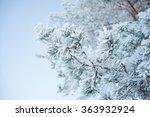 winter forest pine tree... | Shutterstock . vector #363932924