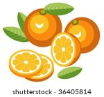 orange with slices | Shutterstock .eps vector #36405814