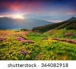 natural summer scene in... | Shutterstock . vector #364082918