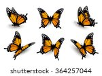 Six Butterflies Set. Vector.