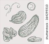 vector illustration set of... | Shutterstock .eps vector #364295510