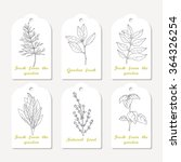 tags collection with hand drawn ... | Shutterstock .eps vector #364326254