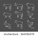 vector linear set of farm... | Shutterstock .eps vector #364336370