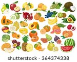 big collection of isolated... | Shutterstock .eps vector #364374338