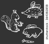 vector illustration hand drawn... | Shutterstock .eps vector #364382858