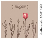 row of tulips  hand drawn... | Shutterstock .eps vector #364410563