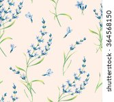 seamless pattern of lavender... | Shutterstock . vector #364568150