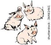 Vector Karikatur Pigs