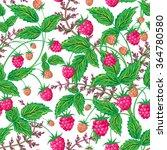 colored raspberries seamless... | Shutterstock .eps vector #364780580