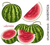 watermelon isolated vector on...   Shutterstock .eps vector #364809026