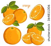 orange fruit vector isolated... | Shutterstock .eps vector #364811306