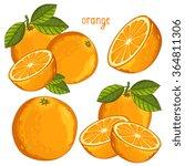 orange vector. fresh tropical... | Shutterstock .eps vector #364811306