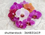 colorful orchid in bowl on silk | Shutterstock . vector #364831619