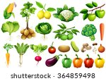 various kind of vegetables... | Shutterstock .eps vector #364859498