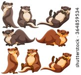 Cute Otters In Different...